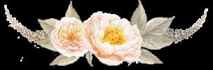 flower-prem2-1